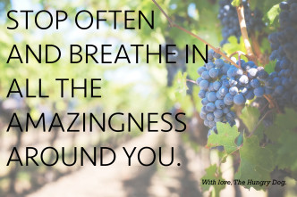 Stop often and breathe in all the amazingness around you.