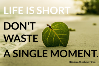 Life Is Short. Don't waste a single moment.